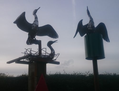 Cormorants on channel markers