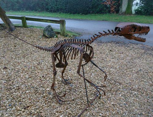 Raptor – mild steel