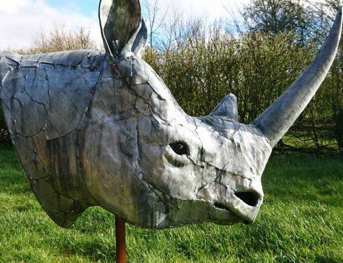 Rhino Head 2